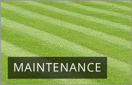 Gardener in driffield bridlington local garden services for General garden maintenance